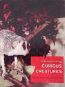 INTRODUCING CURIOUS CREATURES cover